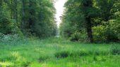 place SAINT-SAUVEUR - Point 6 - Photo 1