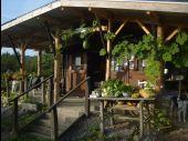 place Somme-Leuze - Le jardin de légumes oubliés - Le Pré Gourmand - Photo 1