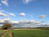 Point d'intérêt Plombières - Vignes de Merckhof - Photo 2