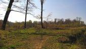 place PUISEUX-EN-RETZ - Point 21 - Photo 2