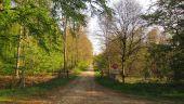 place PUISEUX-EN-RETZ - Point 16 - Photo 3